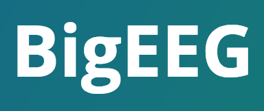 BigEEG Technology Stack